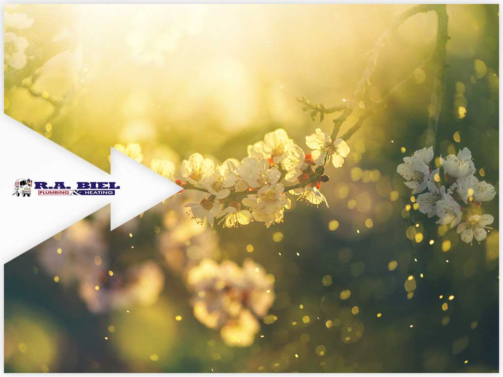 7 Tips for Minimizing Spring Allergen Exposure